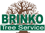 Brinko Tree Service - Pittsburgh - We CUT the DANGER out of trees!
